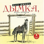 Виль Джемс | Дымка | Конь ковбоя